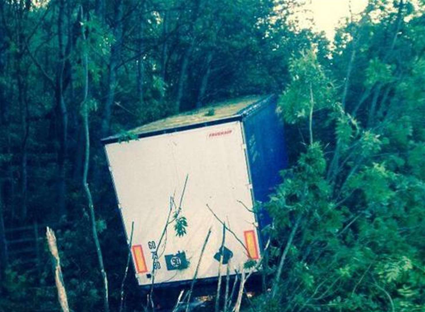 Lorry leaves motorway and plunges into trees