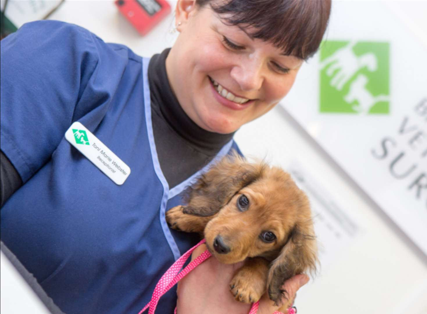 Kent vet voted best in country