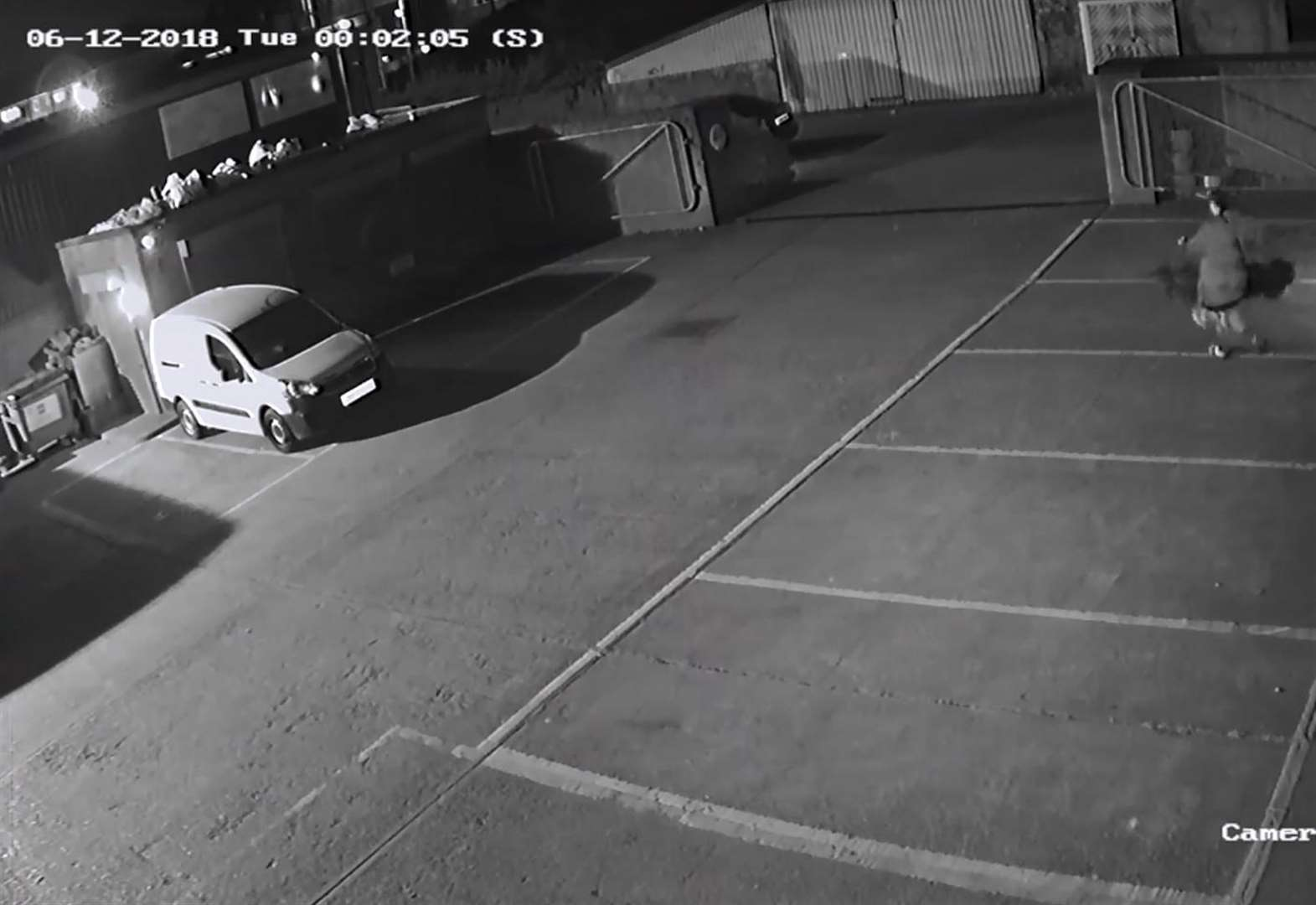 Hanging basket thief caught on CCTV