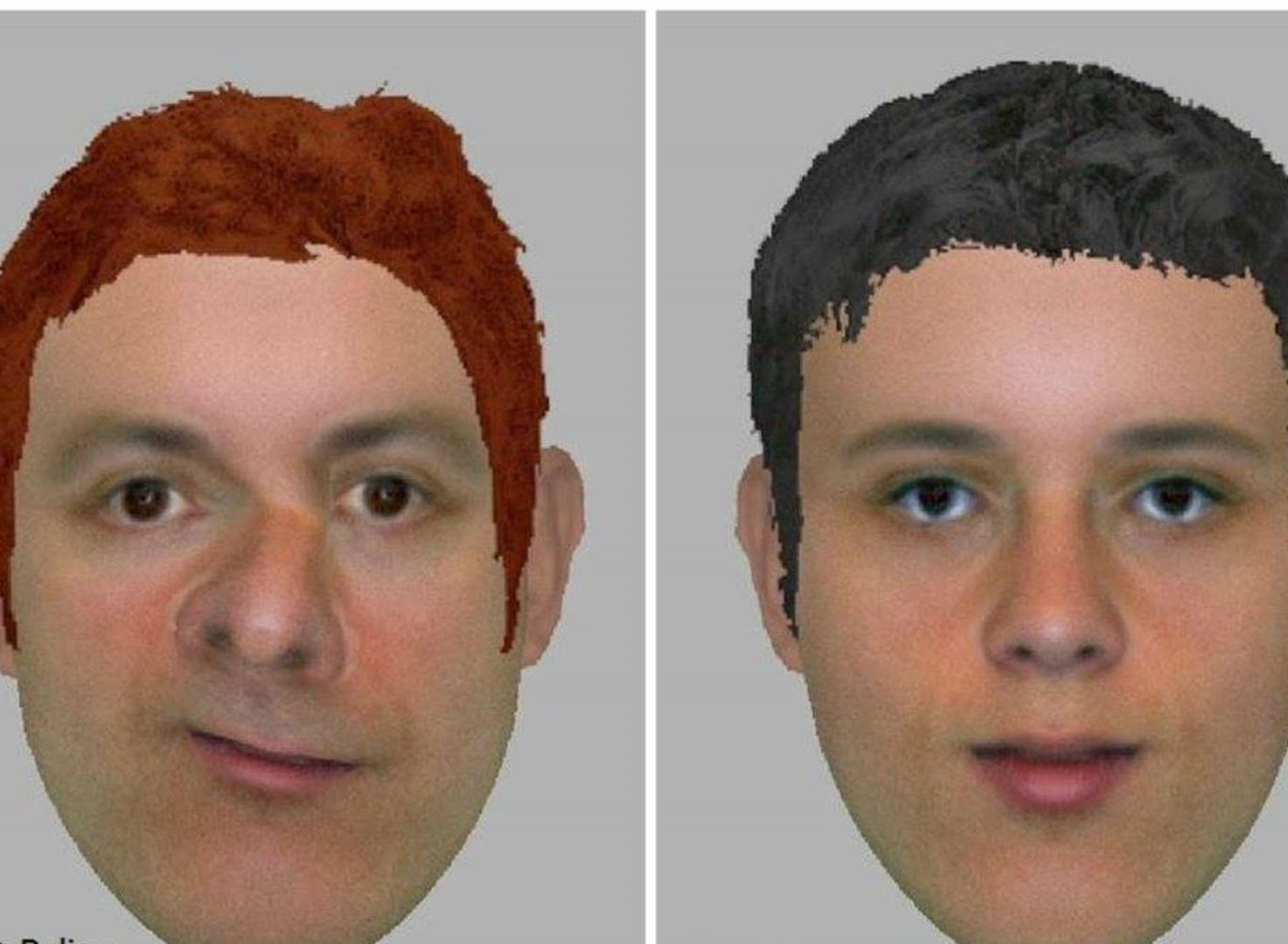 Hunt for burglars with 'distinctive' faces