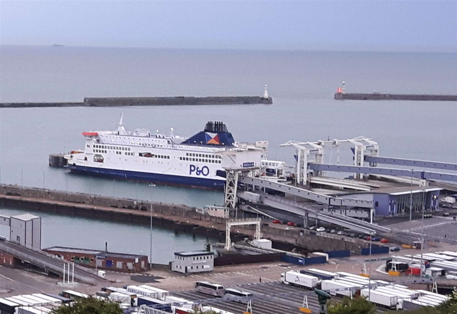 Government dismisses claims Port of Dover could collapse on 'day one' of Brexit