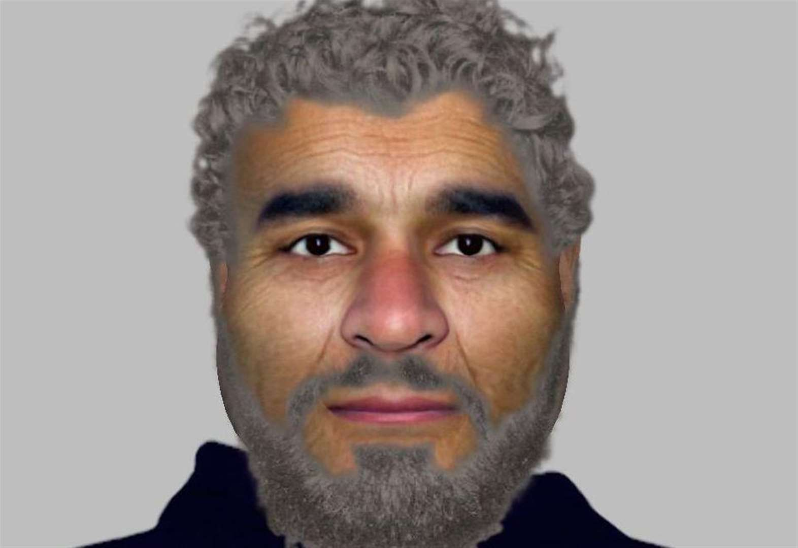 E-fit released after woman 'grabbed' by man in white van