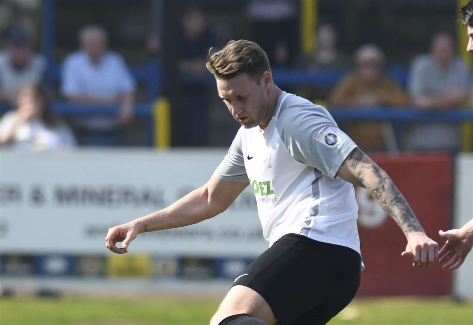 Bird signs for Maidenhead