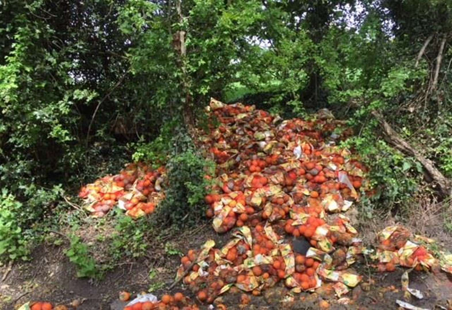 Hundreds of oranges dumped at roadside