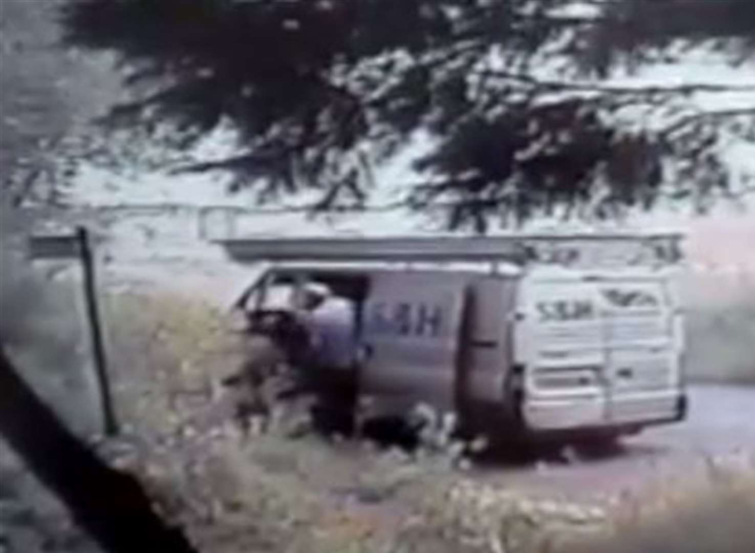 VIDEO: Man fined for throwing dog out of van