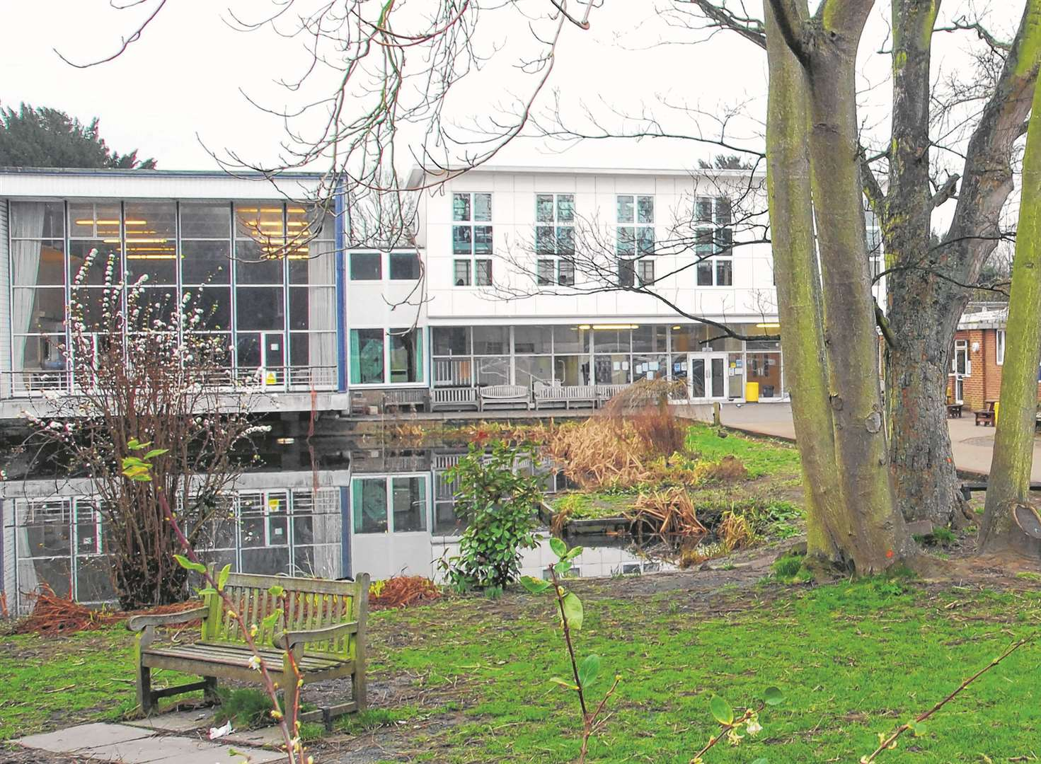 Renewed hopes of new town grammar school