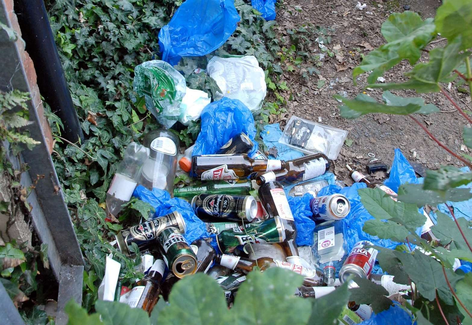 Council increase littering fines