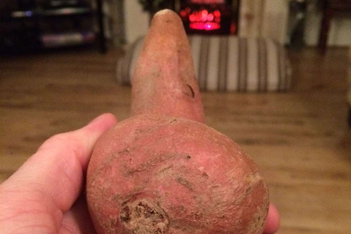 The oddly-shaped spud