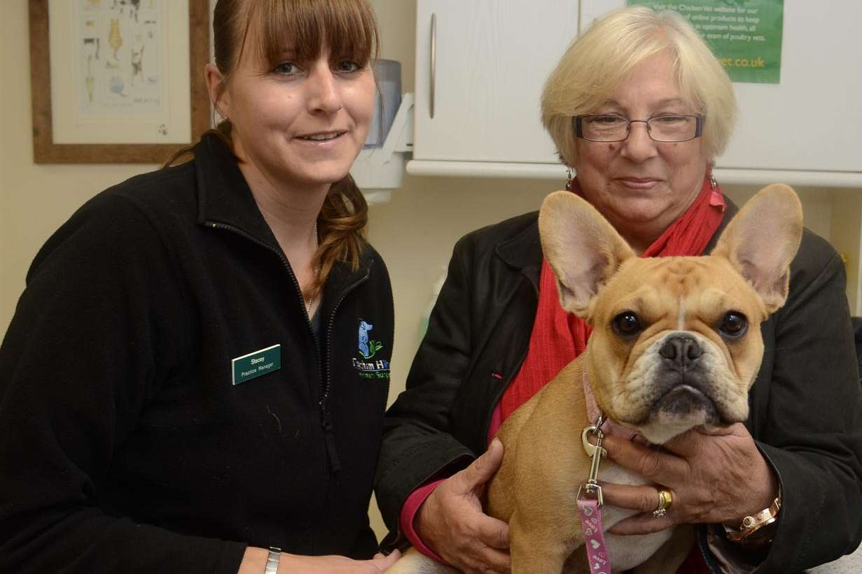 Missy the hermaphrodie bulldog with practice manager Stacey van Gent and owner Josie Munday