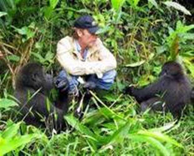 damian aspinall meets gorilla