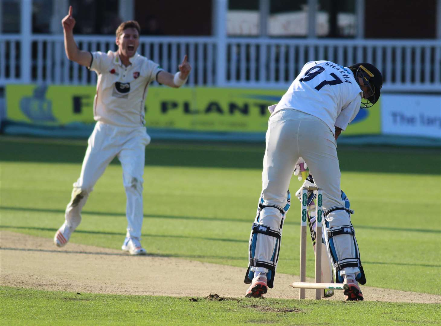 Kent's Matt Henry celebrates bowling Ishant Sharma to clinch victory over Sussex at Canterbry. Picture: Paul Allen