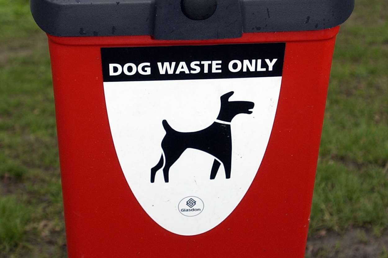 Yobs placed dog mess in a post box instead of a designated dog waste bin