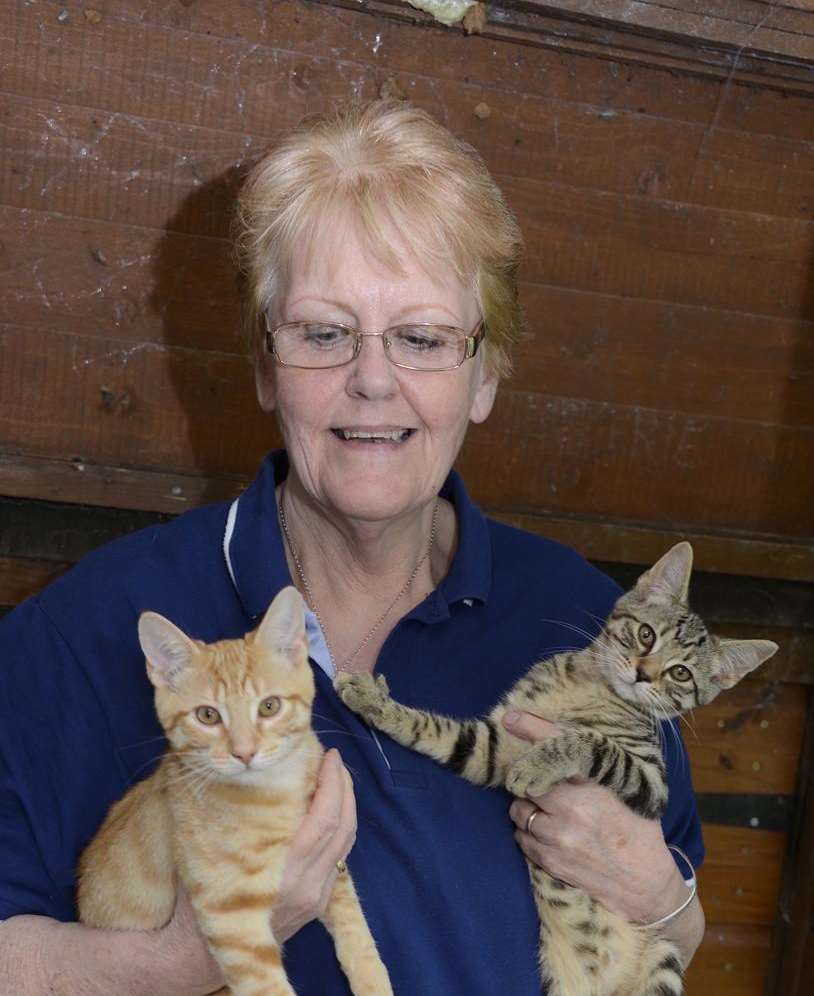 Clare Baumberg with two kittens who are ready to find homes.