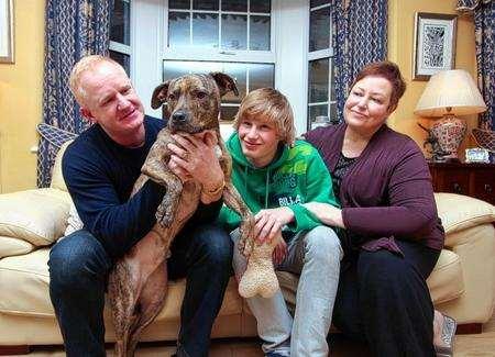 Battersea Dogs Home Folkestone
