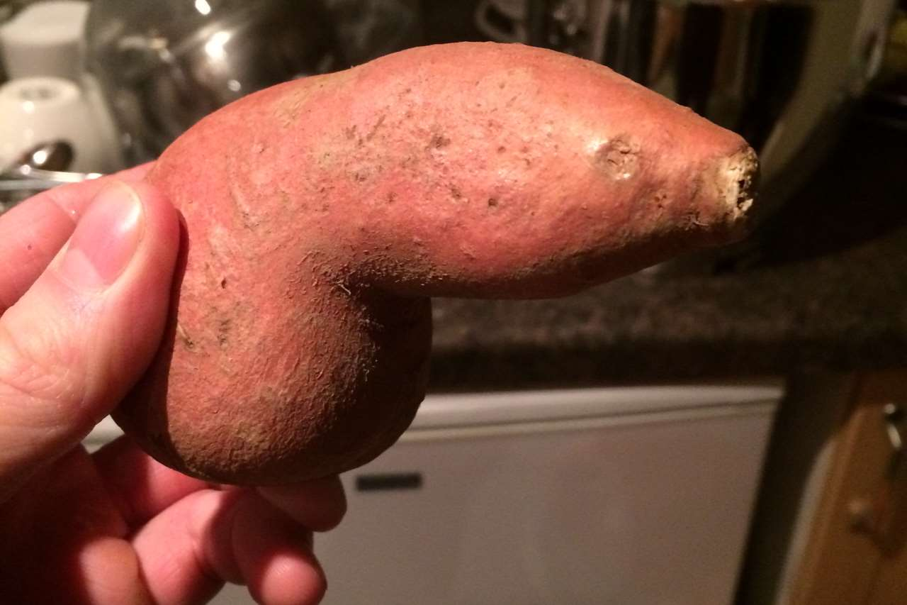The peculiarly-shaped potato