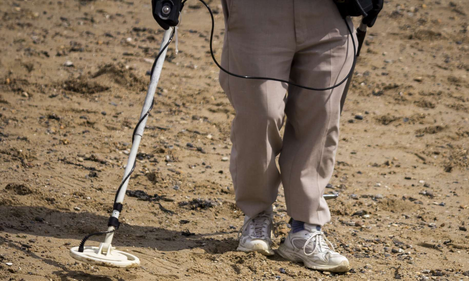 The oyster company has accused detectorists of 'stealing' finds from the beach.