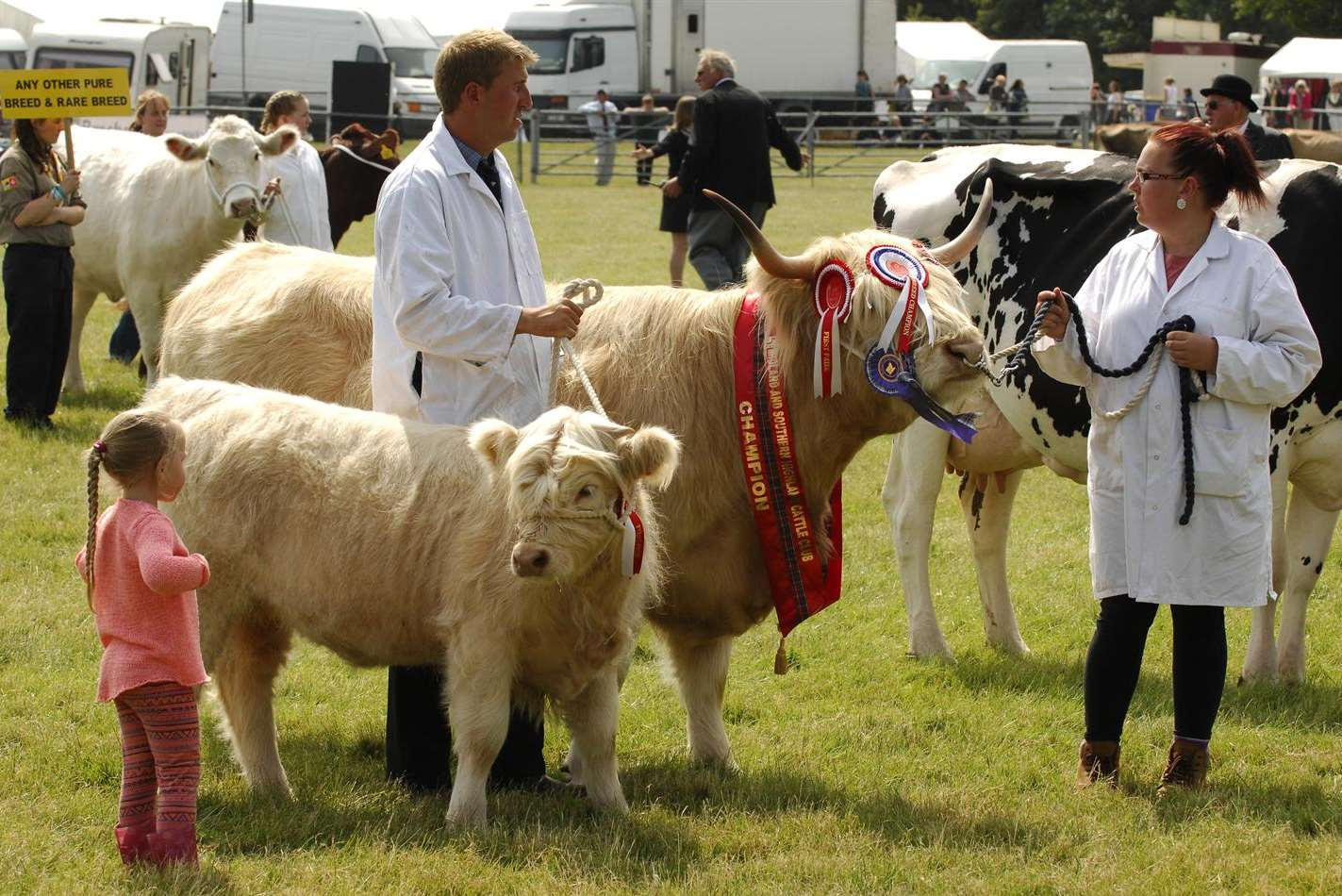 Livestock are one of the features of the Kent County Show
