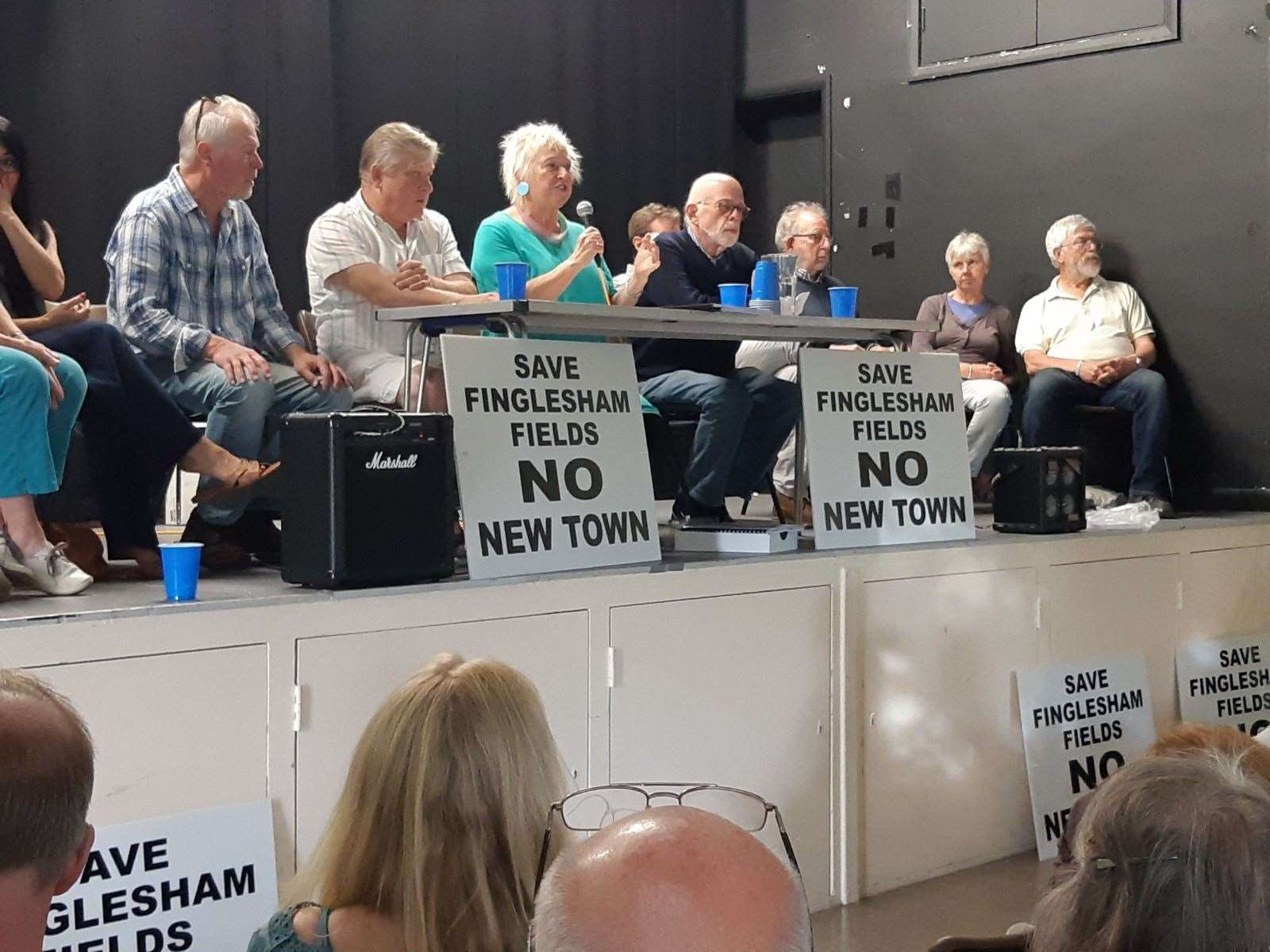 Lynn Davis from Save Finglesham Fields speaking at a public meeting in June