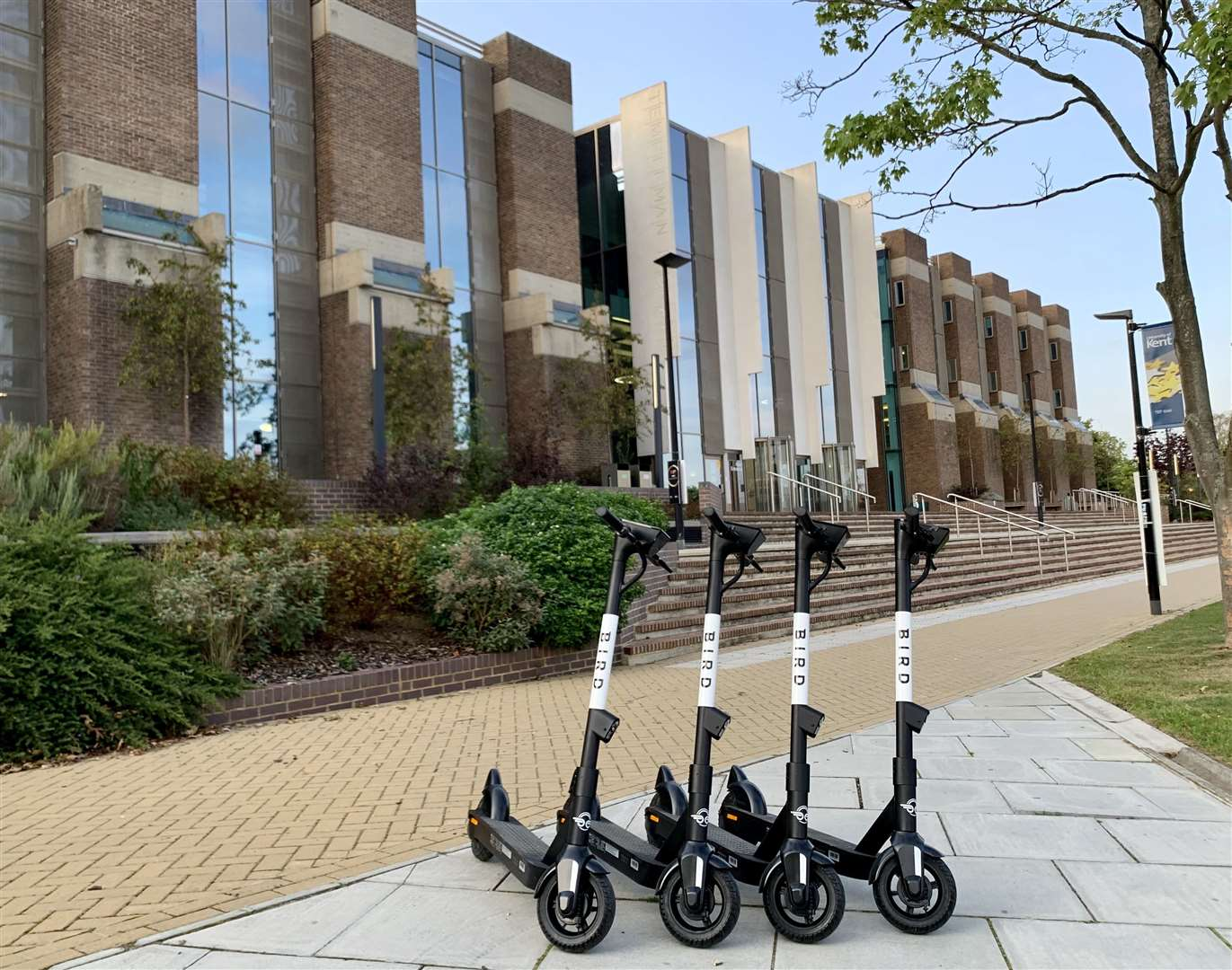 The Bird electric scooters at the University of Kent. Picture: Bird