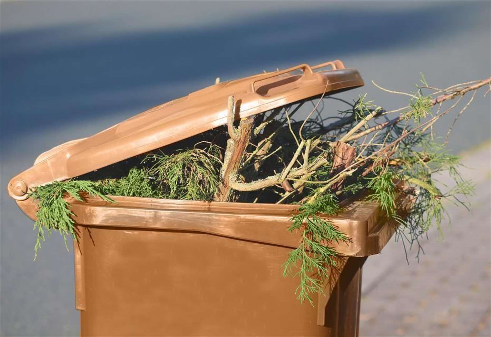 Are you paying the most to get your garden waste collected?