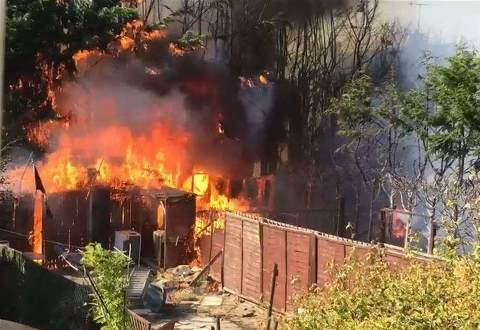 Fire tears through trees and shed