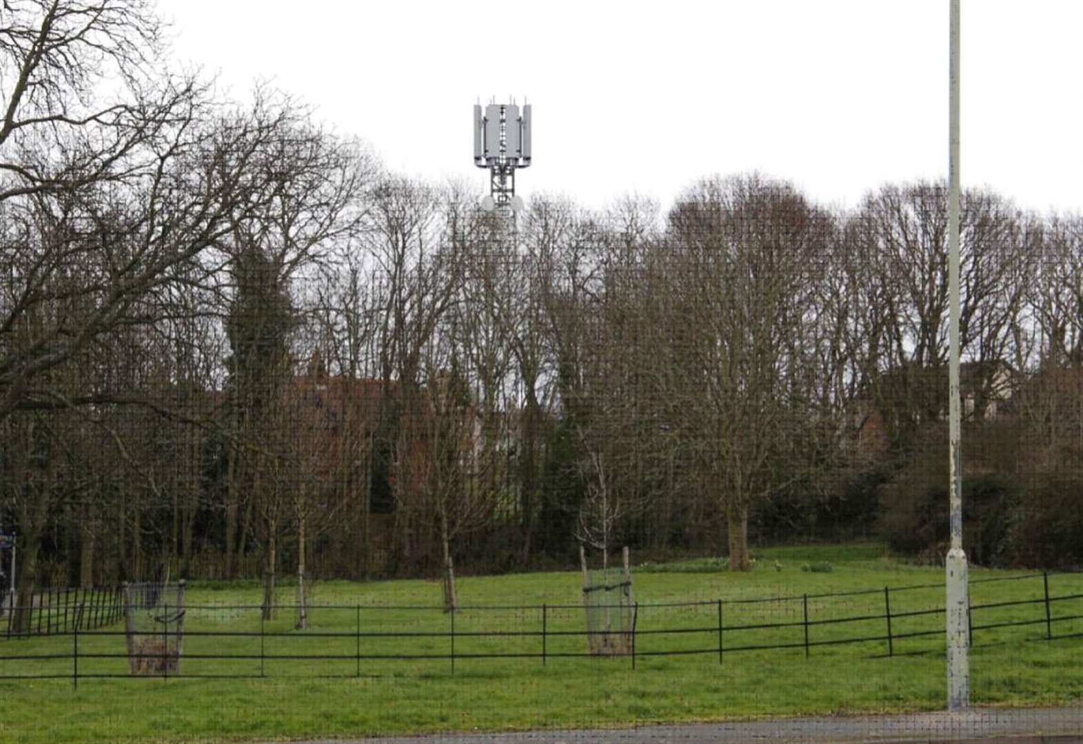'Brontosaurus sized phone mast will ruin our village'