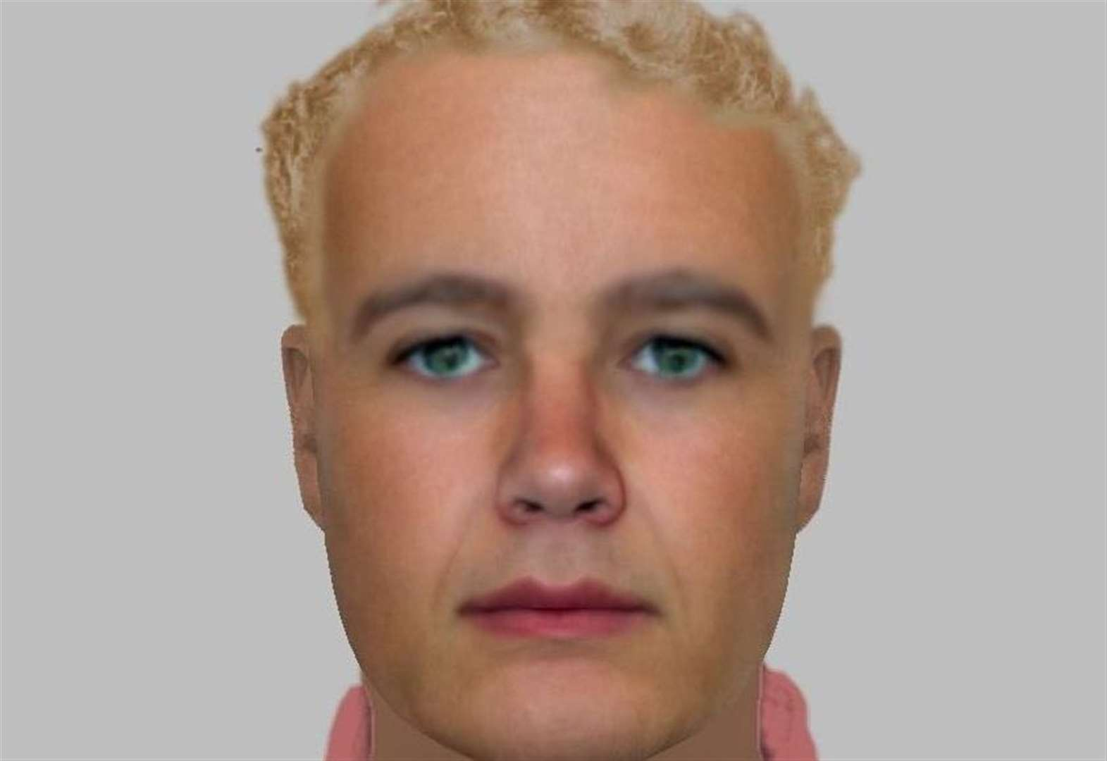 Police issue e-fit of boiler man at pensioner's home