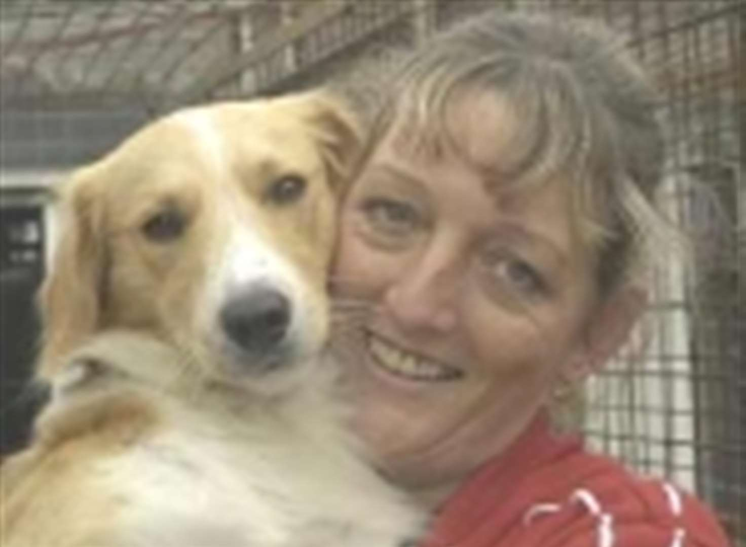 Tail-wagging reunion for dog that faced death