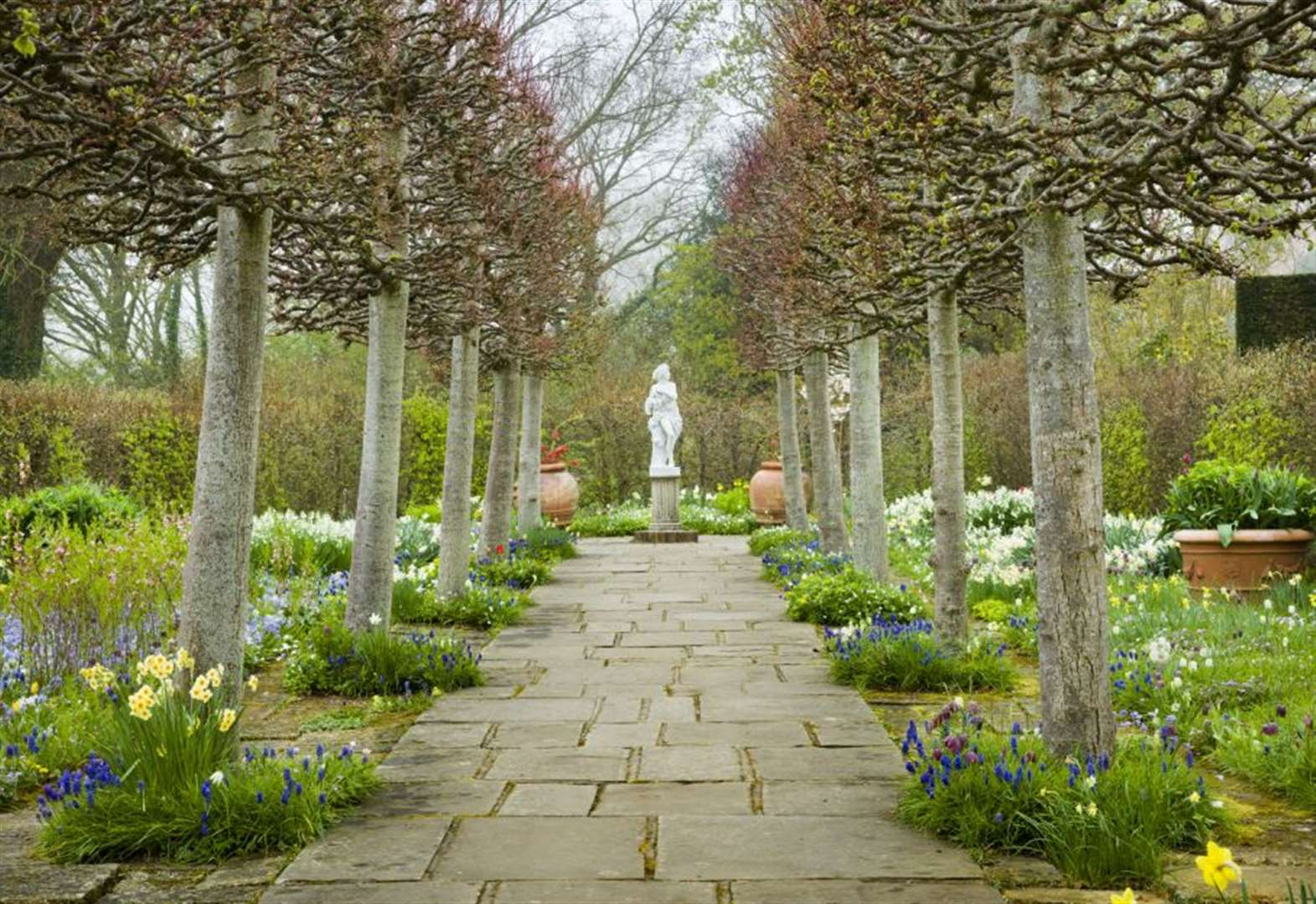 Take a wintry walk in a world famous garden