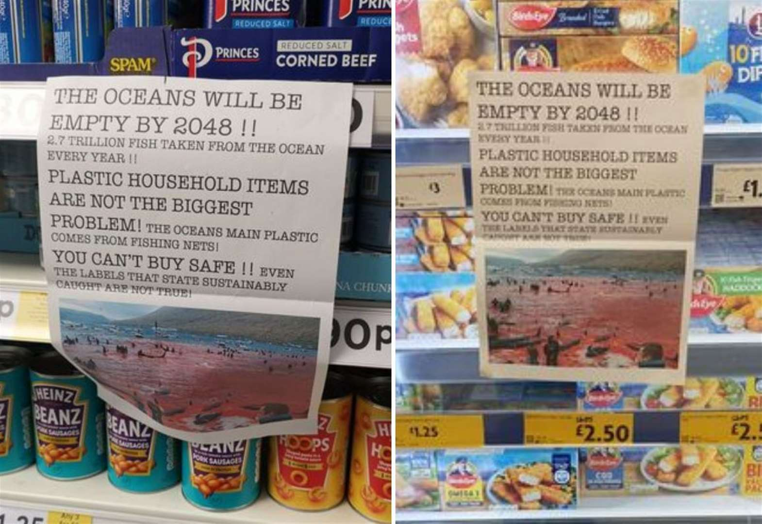 'Don't eat fish' posters plastered on supermarket aisles