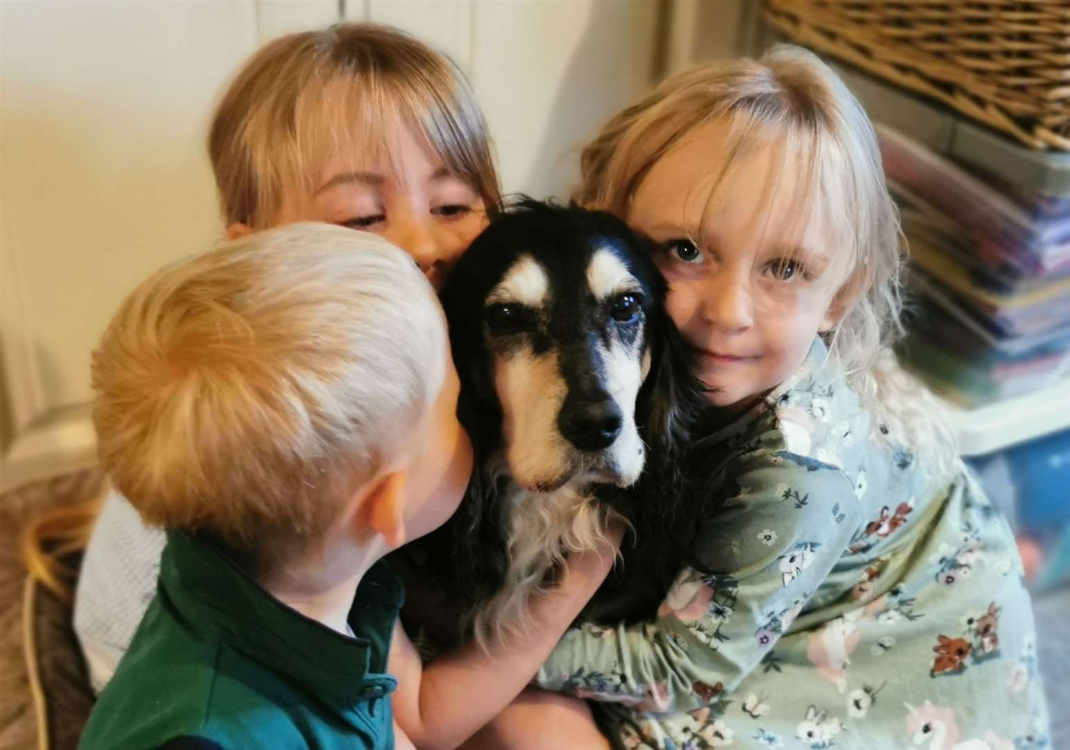 Joy as family reunited with stolen dog
