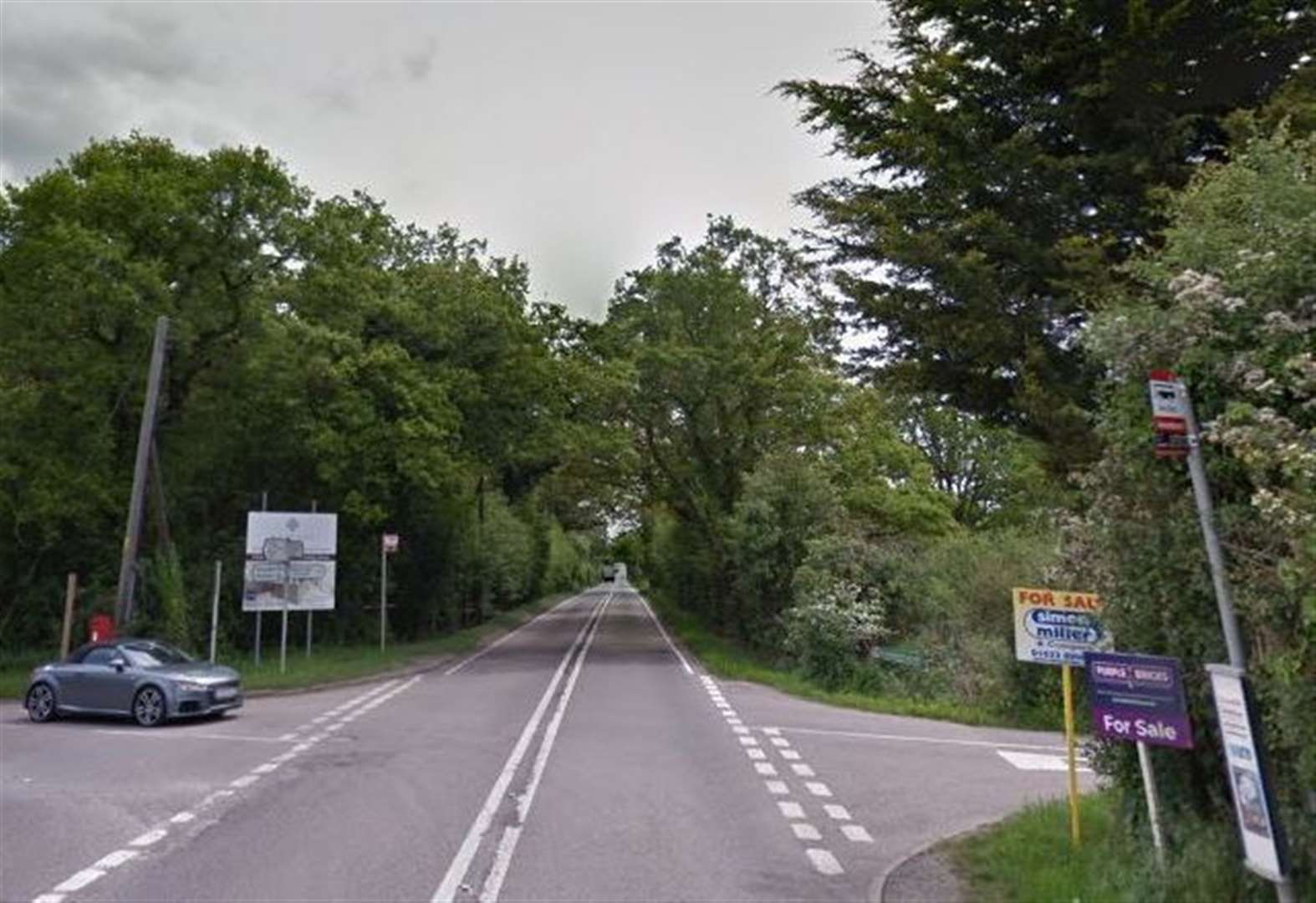 Woman in hospital as car hits tree