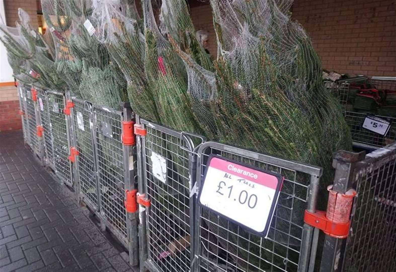 Where to buy a Christmas tree for £1
