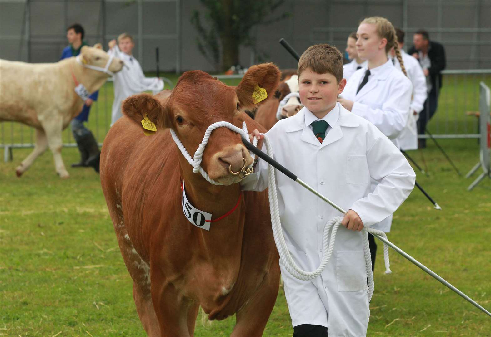 County show postponed and 'scaled back'