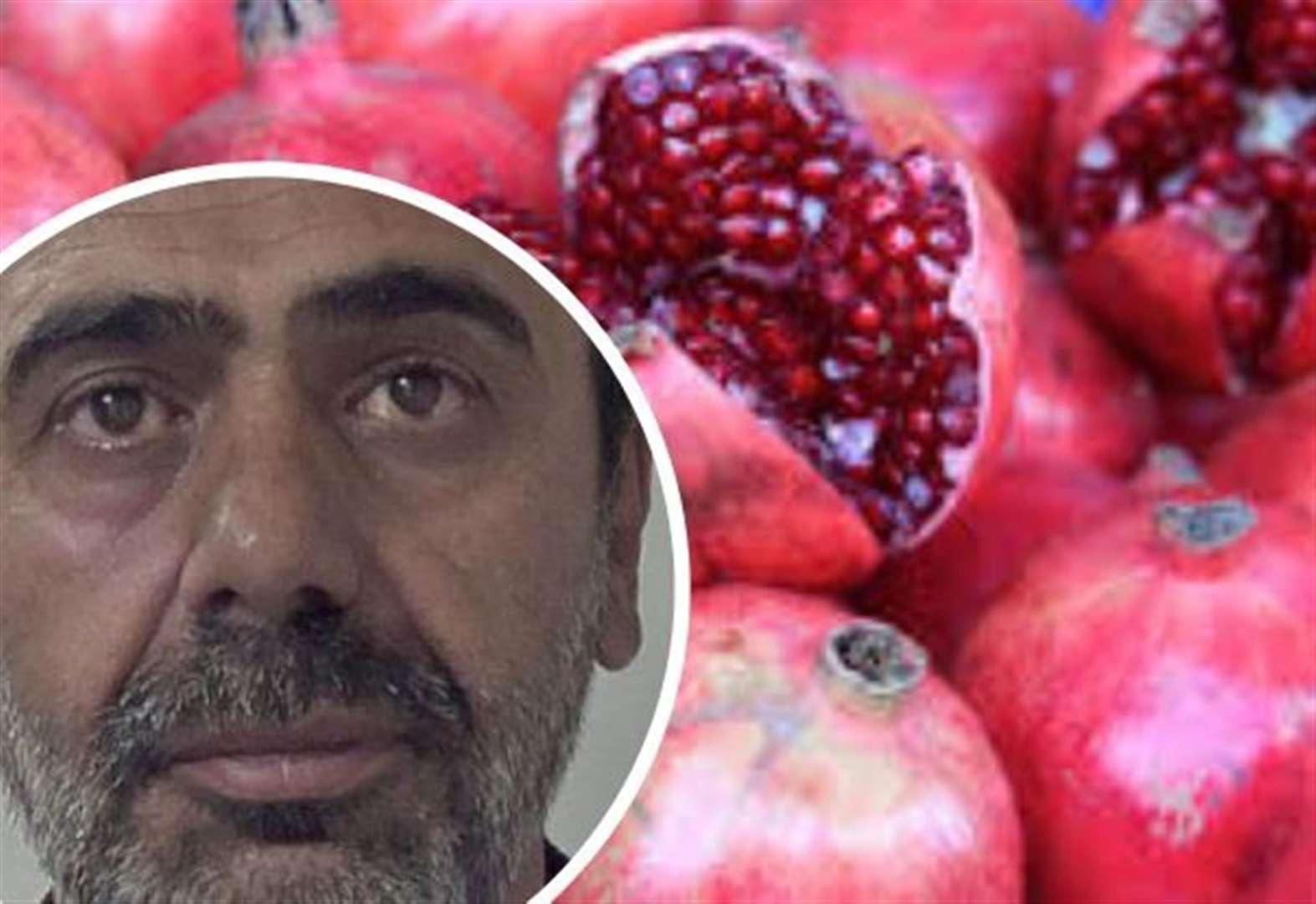 Pomegranate courier caught smuggling migrants