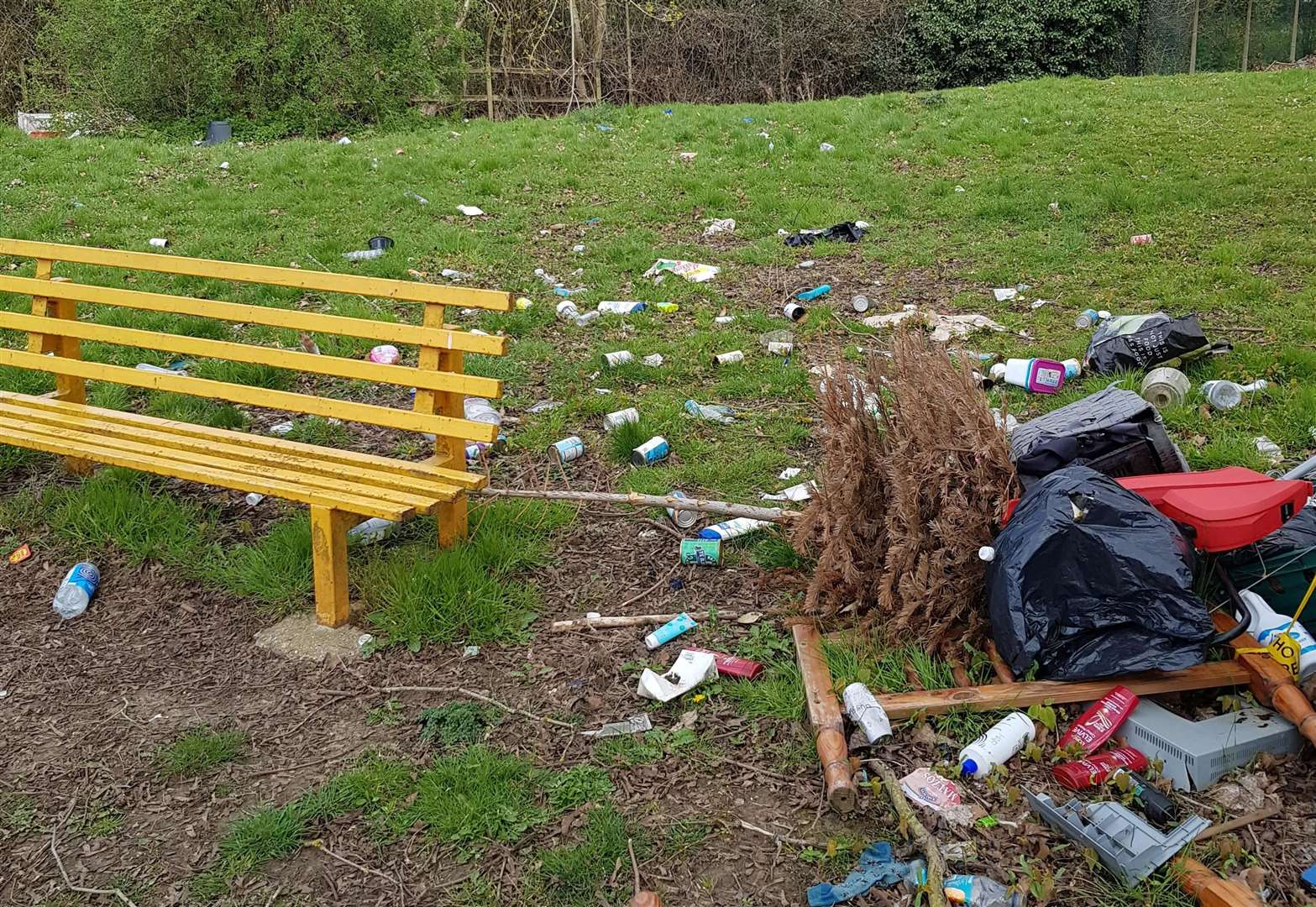 Beauty spot fly-tipping 'a disgrace'