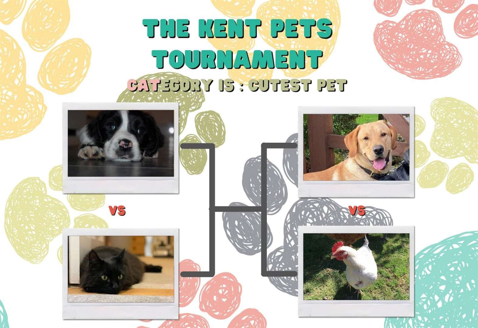 Vote in the 2nd round of the Kent Pets Tournament
