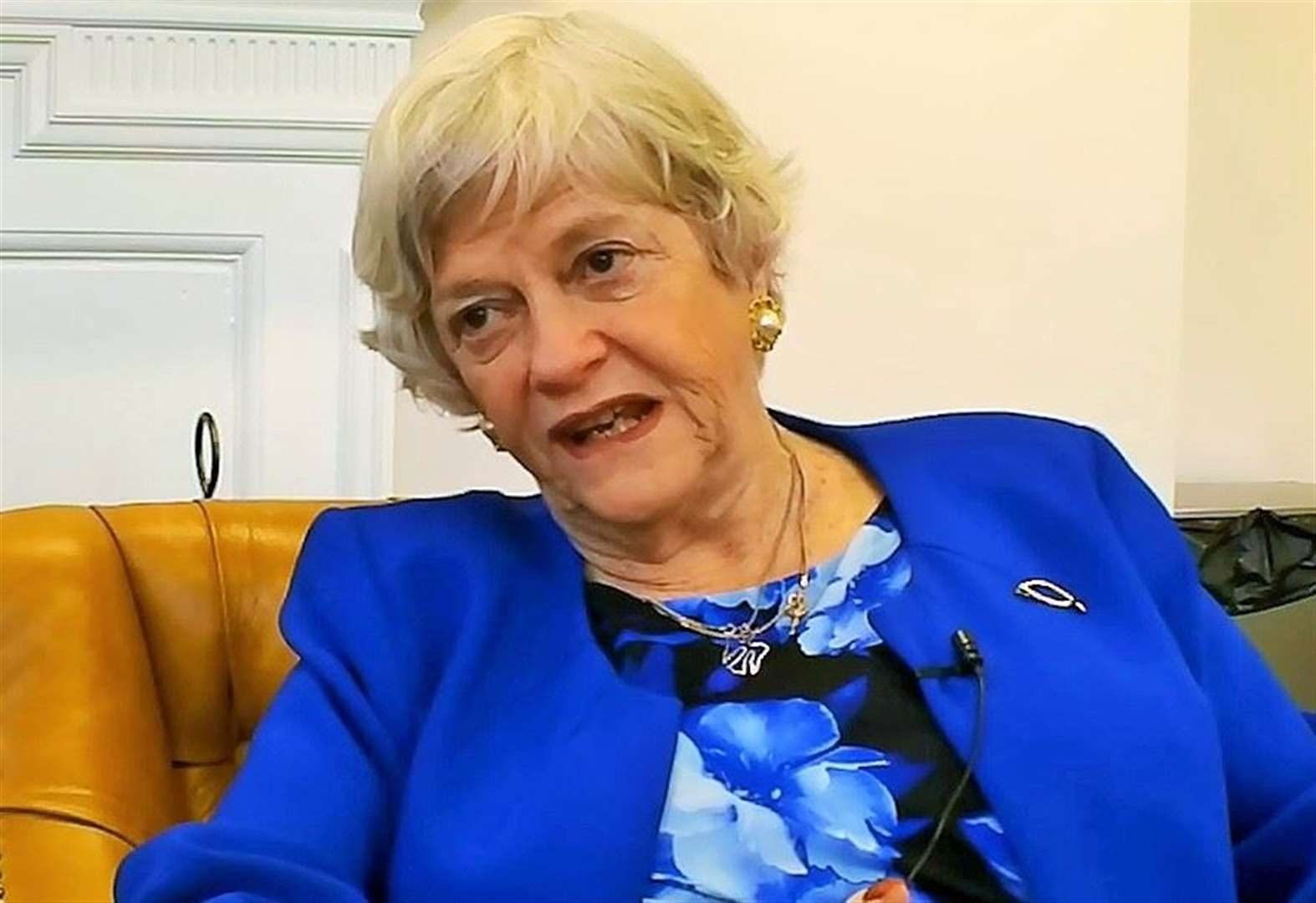Widdecombe wins in European Elections