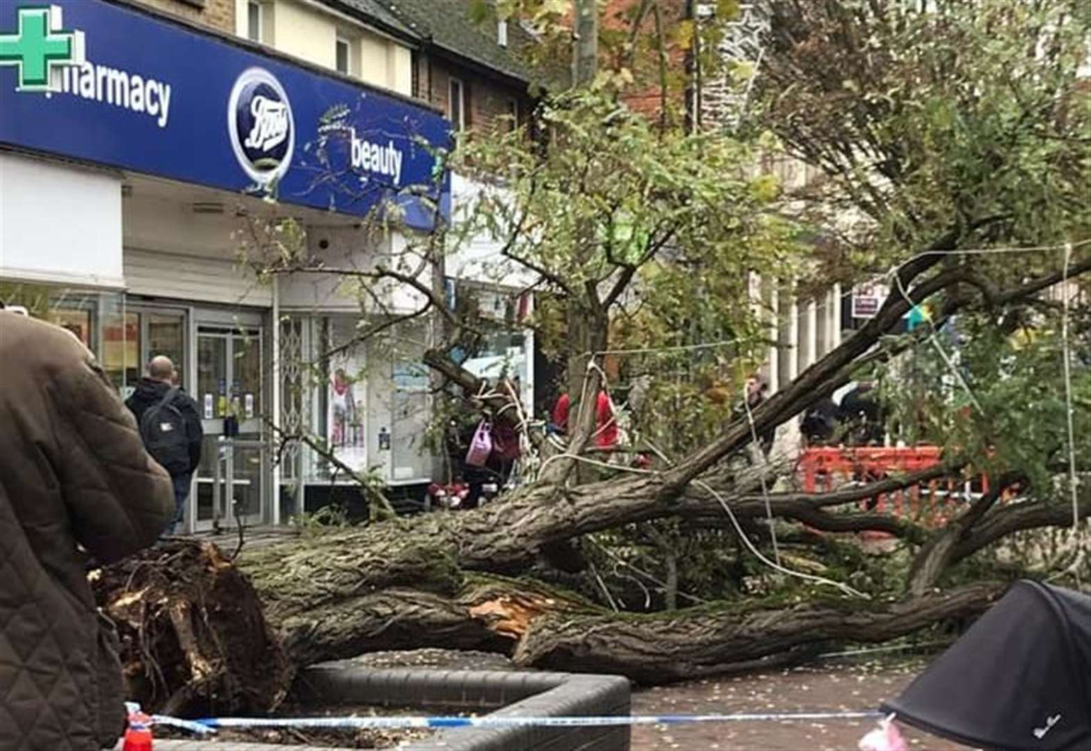 Huge tree topples over in shopping area