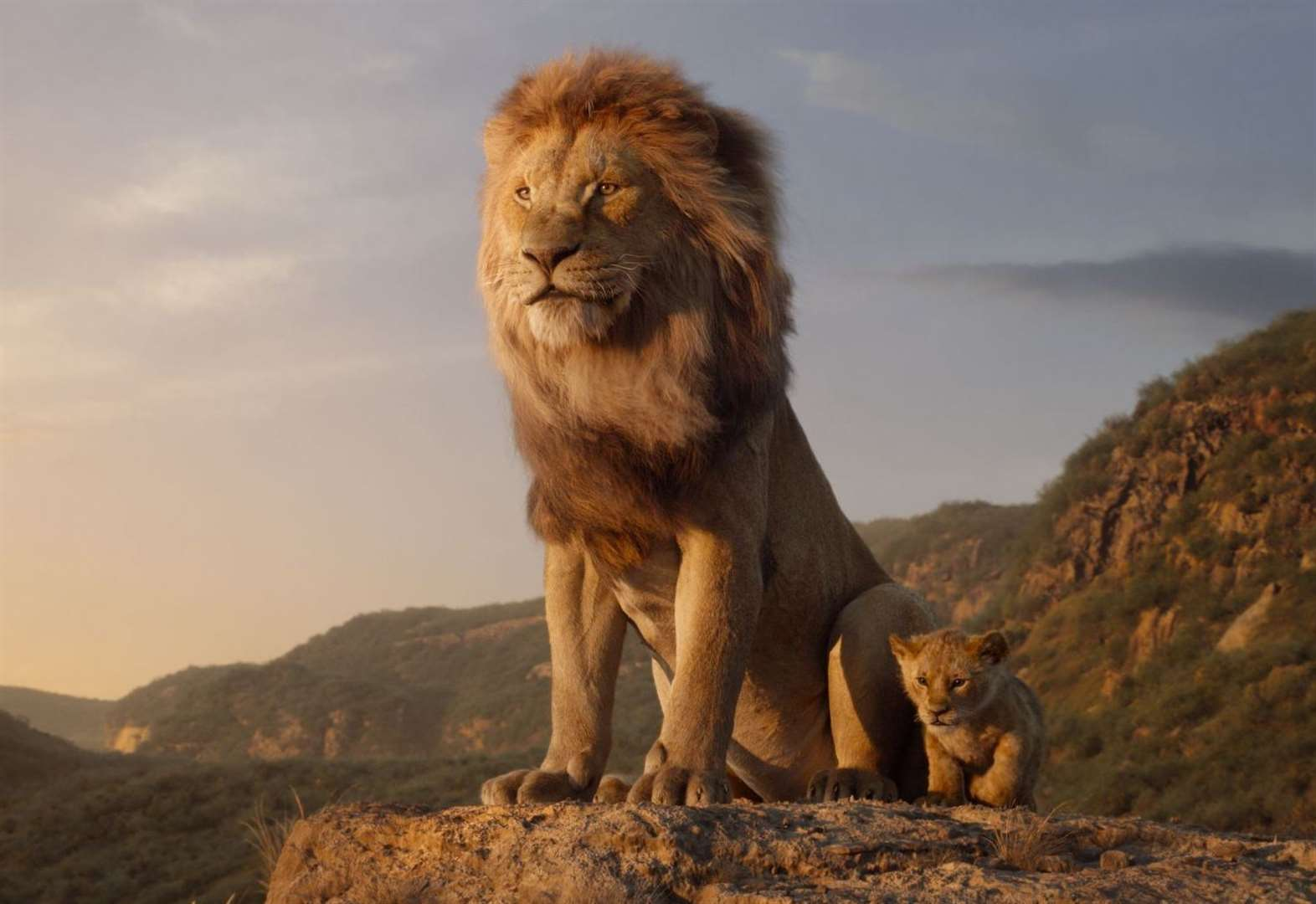 Does The Lion King live up to the hype 25 years on?