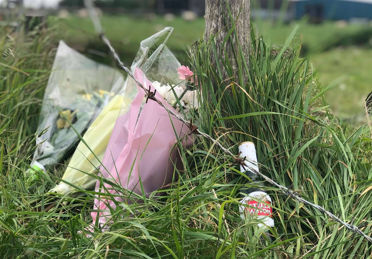 Beer and floral tributes left at double-fatal crash scene