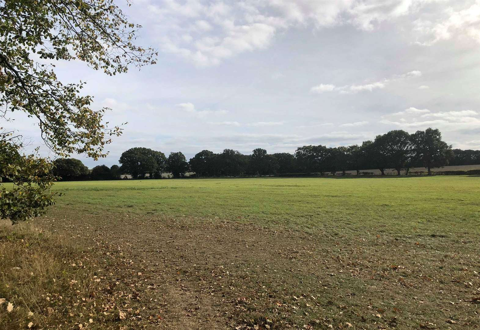 'Green spot' threatened by homes and school plan