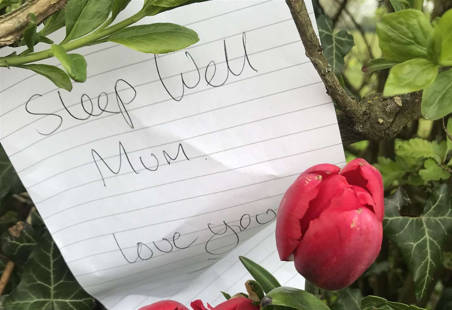 Heartbreaking note left at roadside where woman died