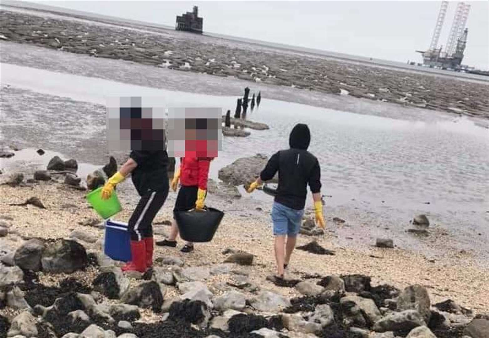 Petition launched to stop 'rape and pillage' of beaches