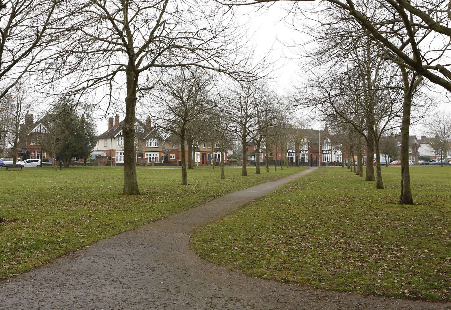 Woman 'sexually assaulted by cyclist in park'