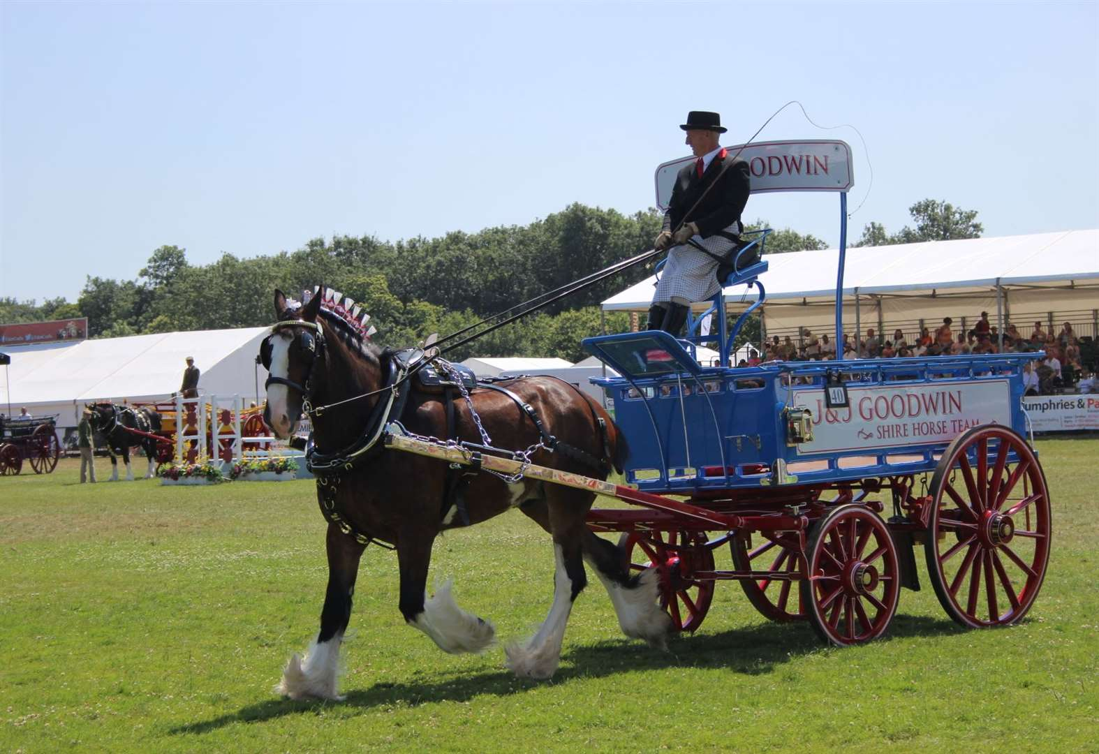 Horse couple's success at Kent County Show