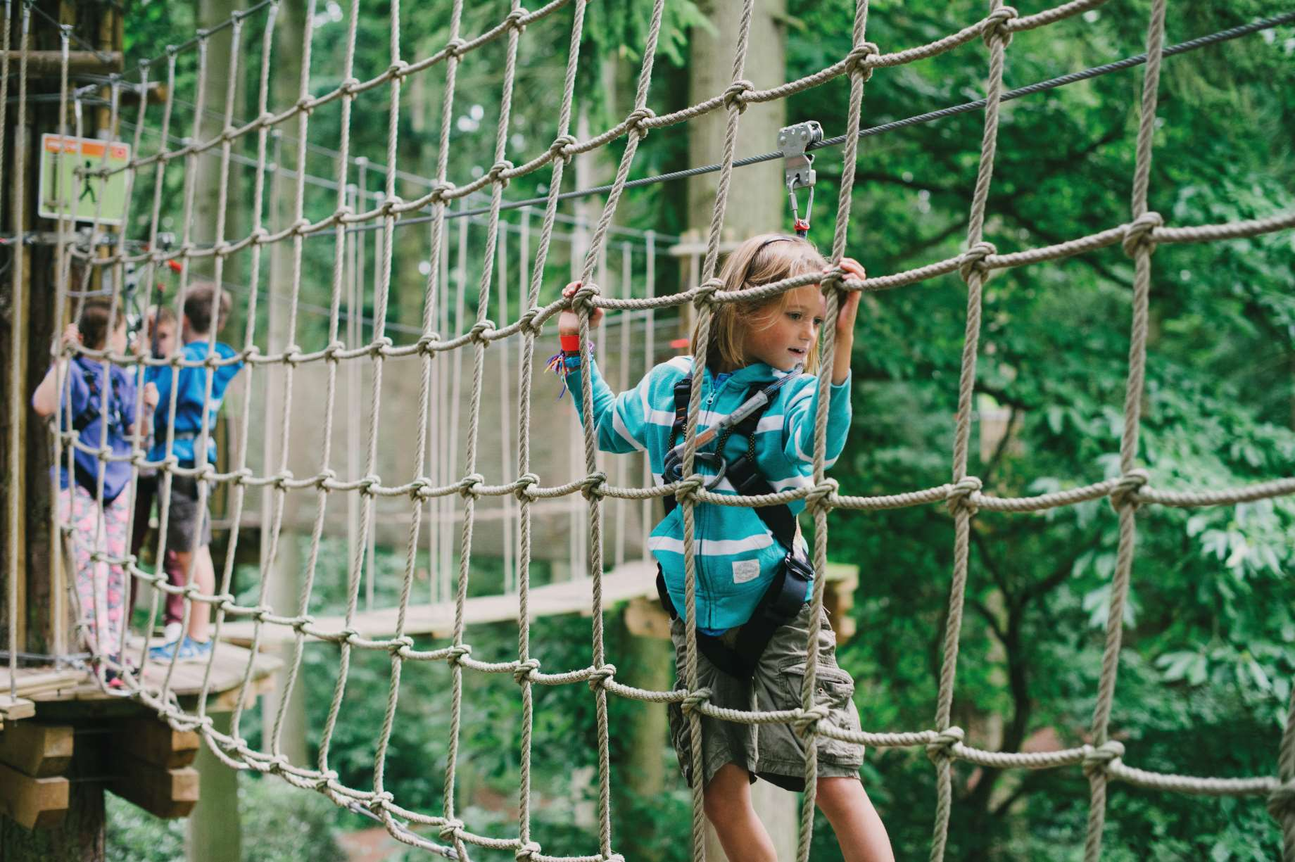 Hang out at Go Ape this summer