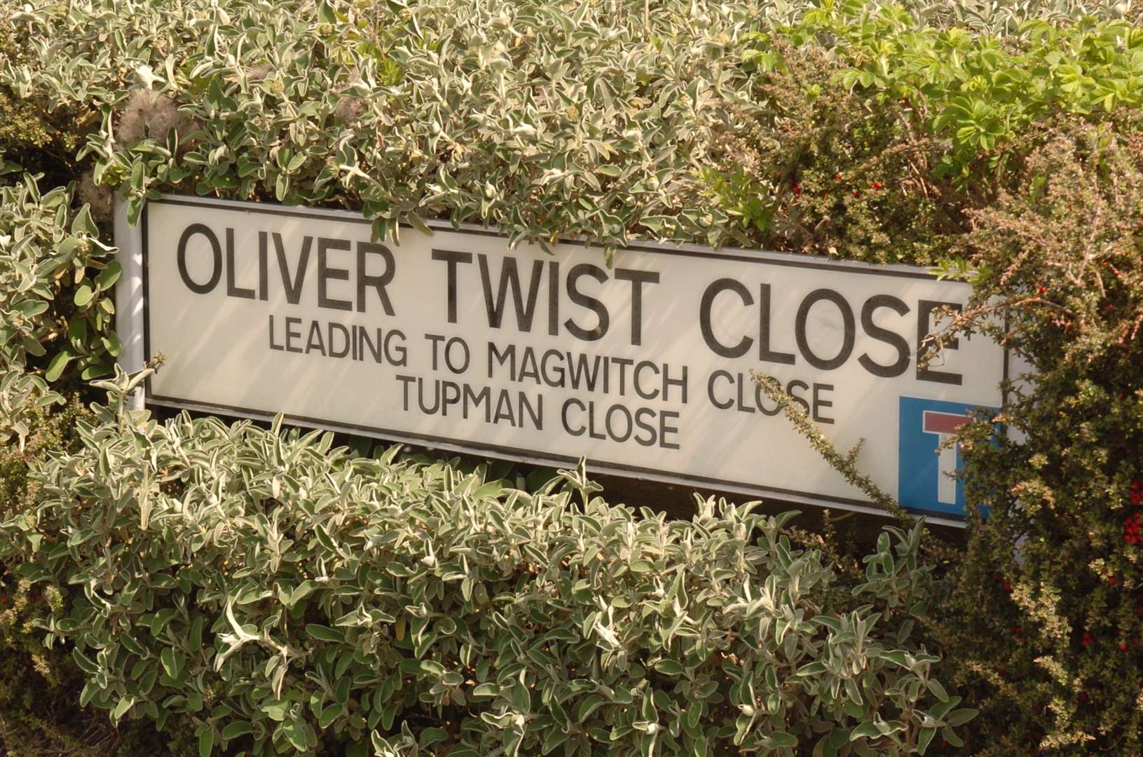 Oliver Twist Close, Rochester. Steve Crispe