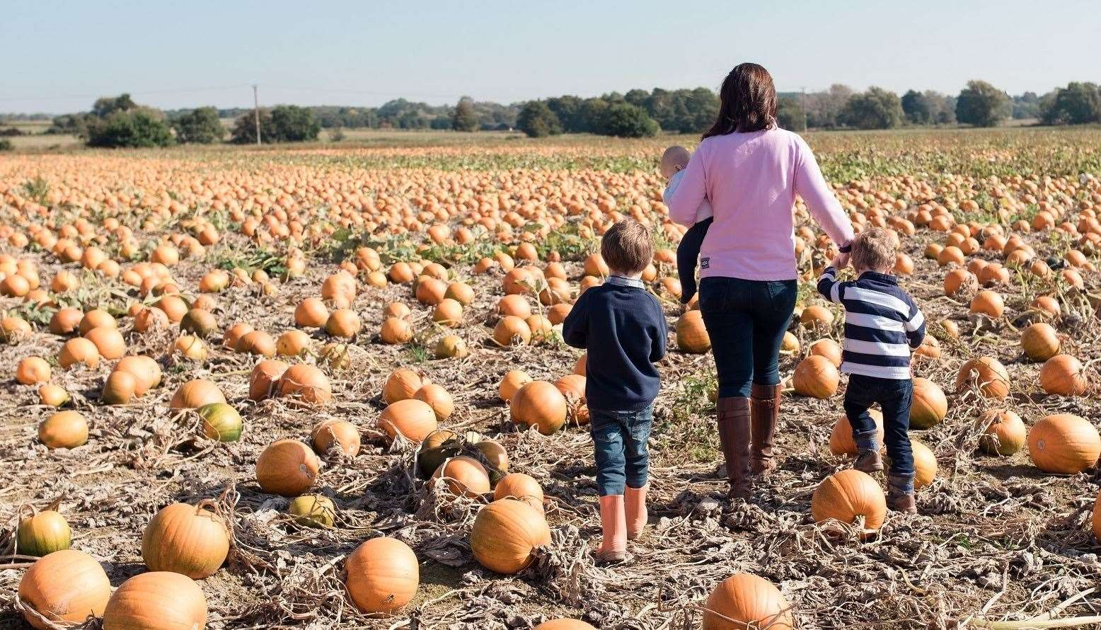 Pick your own pumpkin at Sevington, Ashford Picture: Inga Keyes
