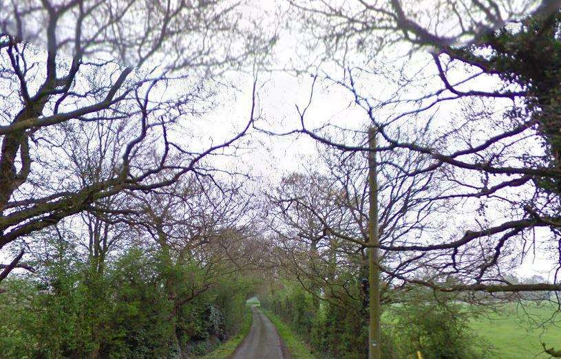 The horse was dumped in Green Lane, Chart Sutton. Picture: Google Street View